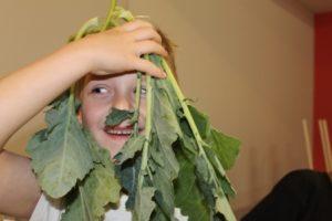 zielony lud mak callana kulinarki